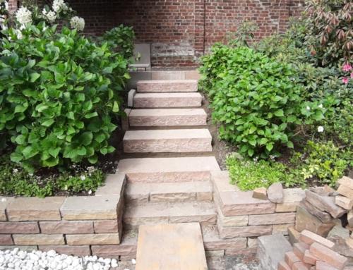 Gartenanlage, Treppe, Hecke